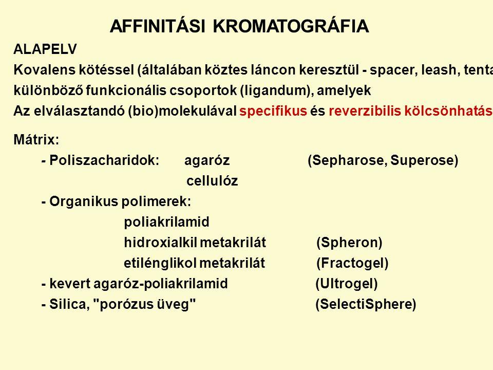 AFFINITÁSI KROMATOGRÁFIA