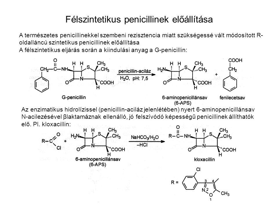 Félszintetikus penicillinek előállítása