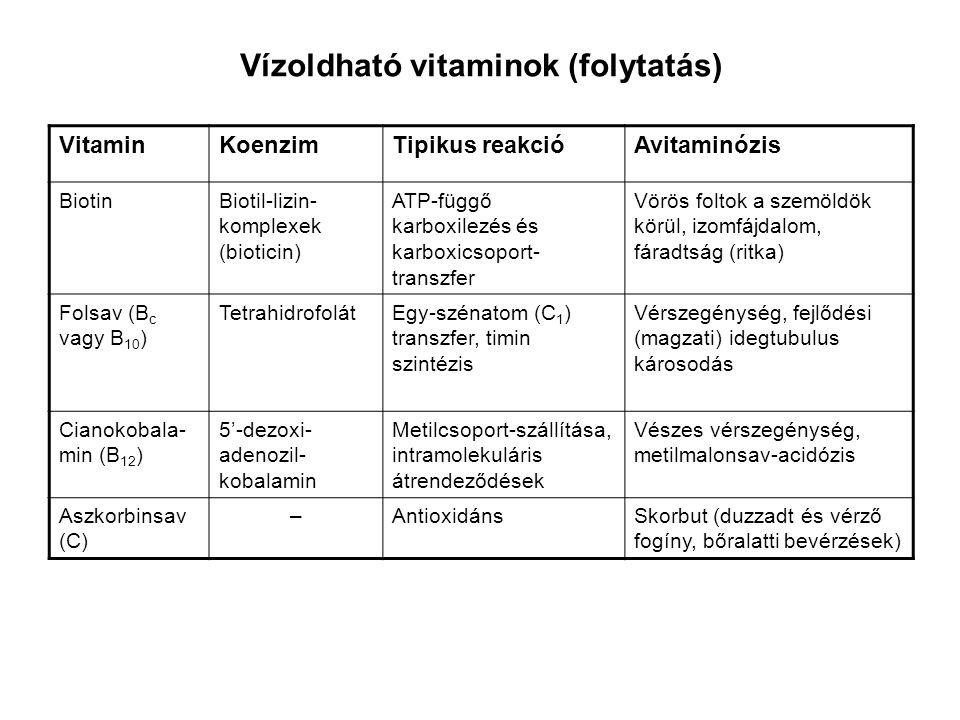 Vízoldható vitaminok (folytatás)