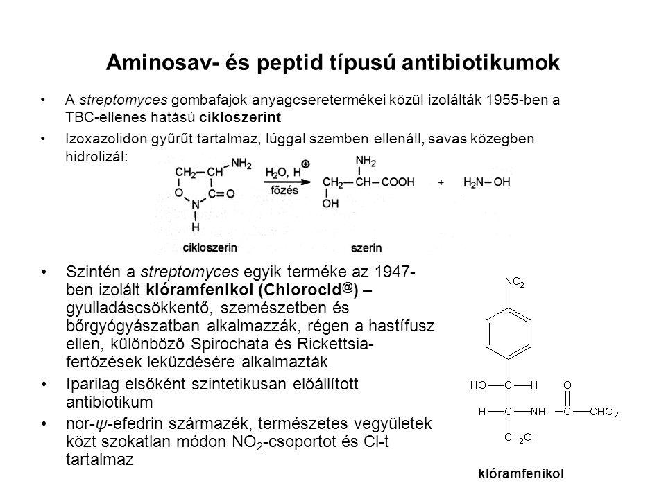 Aminosav- és peptid típusú antibiotikumok