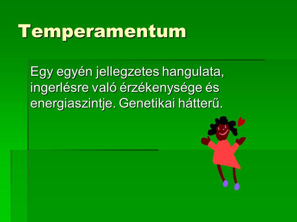 Temperamentum Egy egyén jellegzetes hangulata, ingerlésre való érzékenysége és energiaszintje.