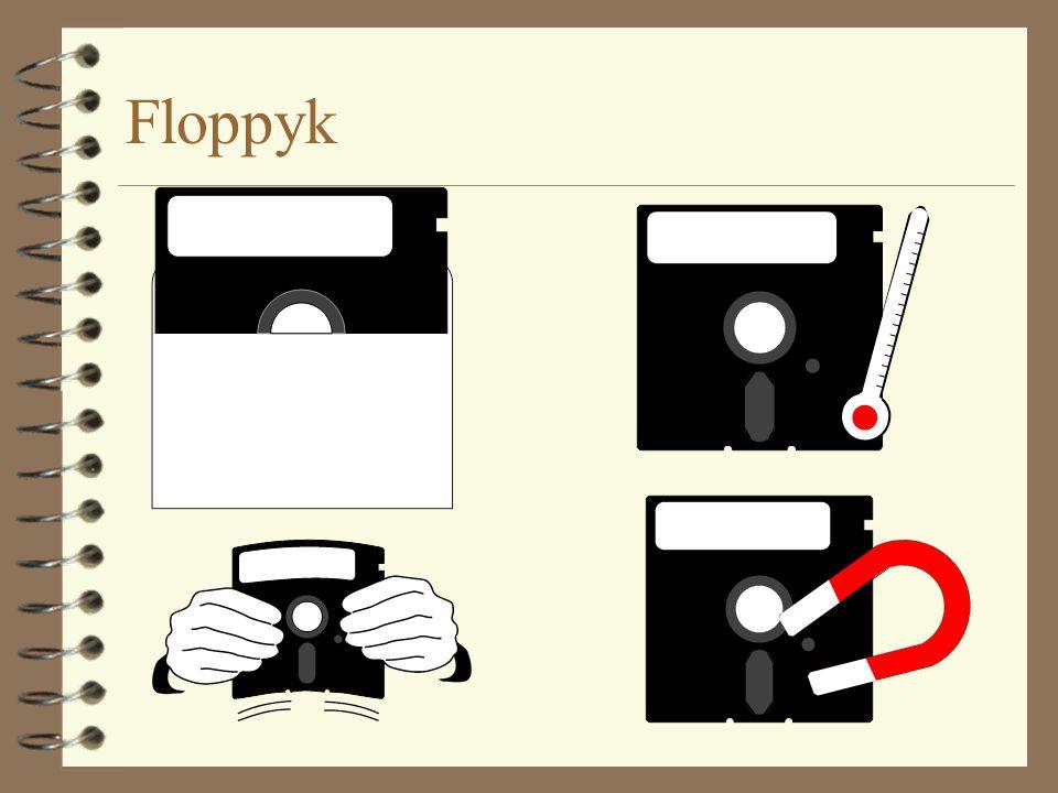 Floppyk