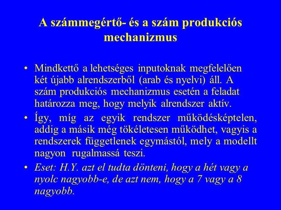 A számmegértő- és a szám produkciós mechanizmus