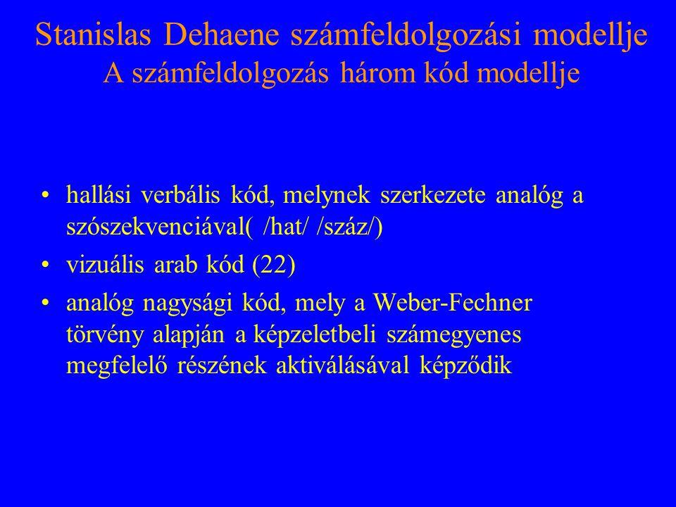 Stanislas Dehaene számfeldolgozási modellje A számfeldolgozás három kód modellje