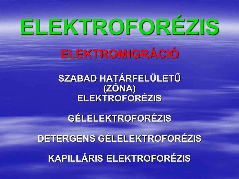 DETERGENS GÉLELEKTROFORÉZIS KAPILLÁRIS ELEKTROFORÉZIS