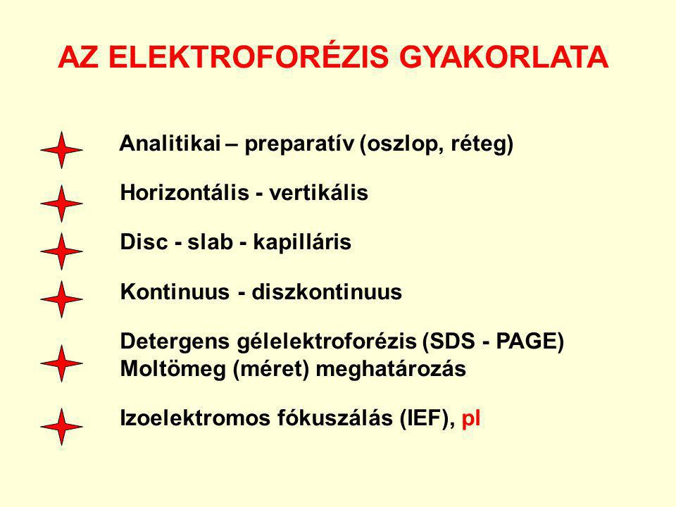AZ ELEKTROFORÉZIS GYAKORLATA