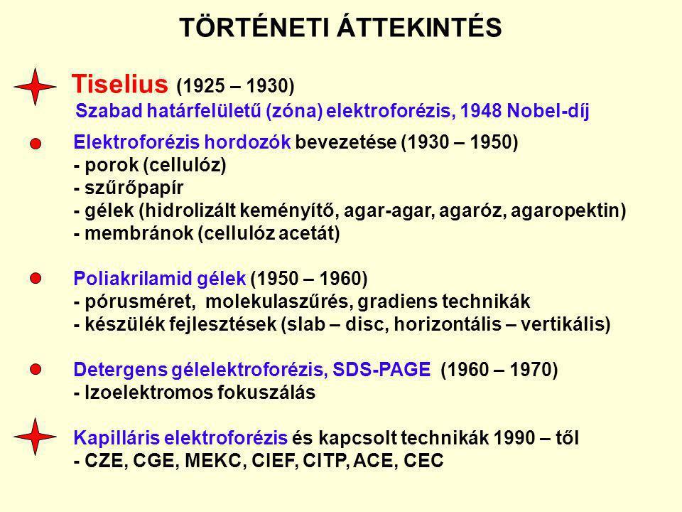 TÖRTÉNETI ÁTTEKINTÉS Tiselius (1925 – 1930)