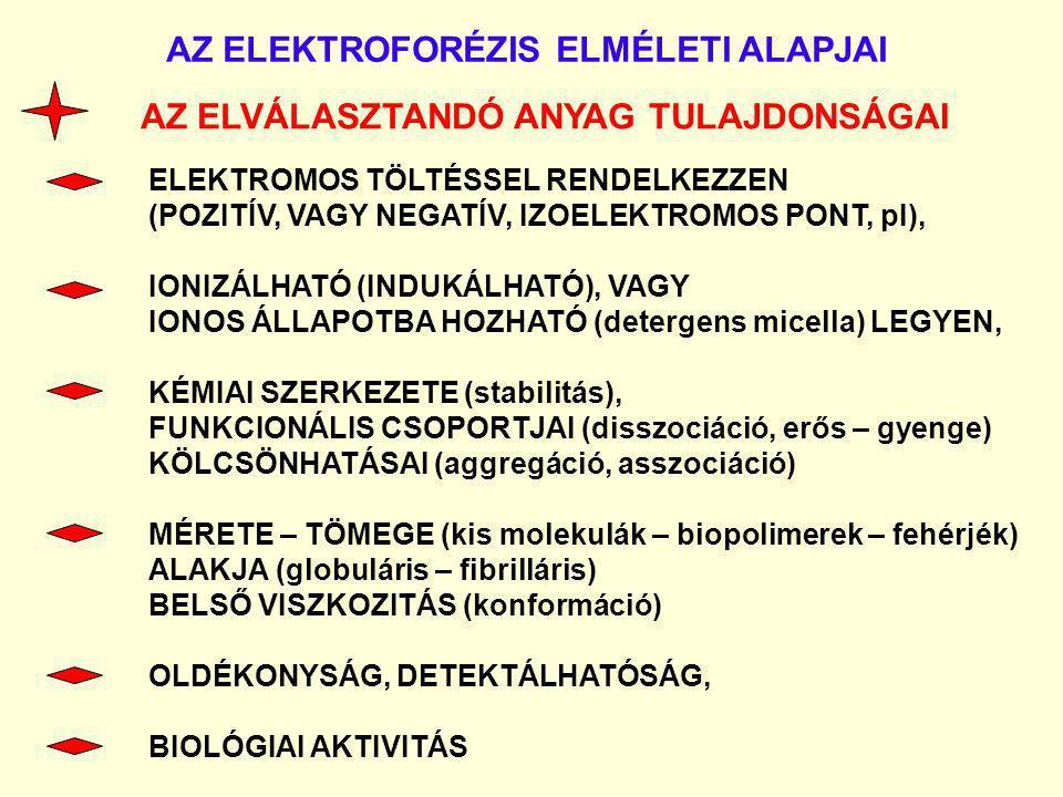 AZ ELEKTROFORÉZIS ELMÉLETI ALAPJAI