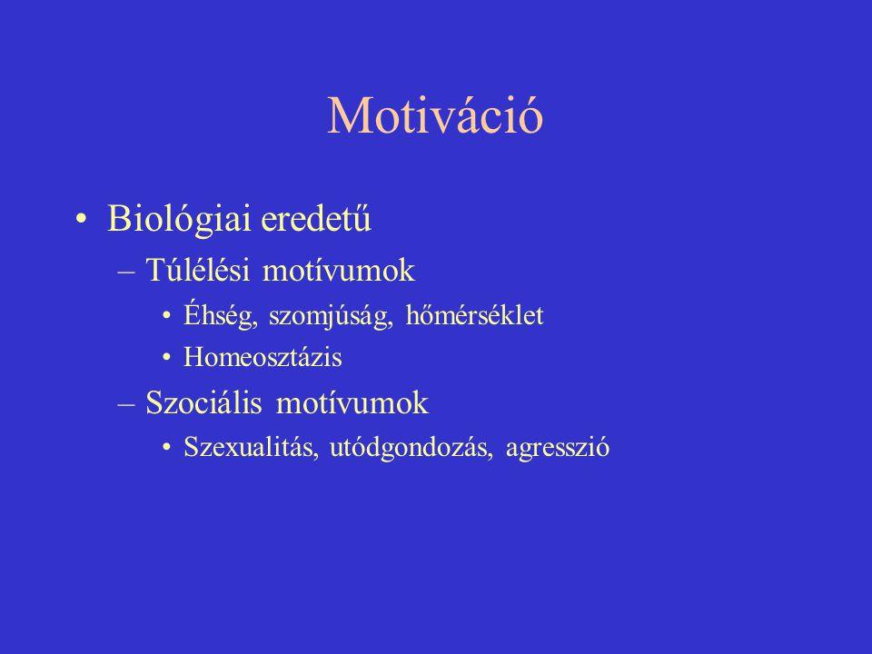 Motiváció Biológiai eredetű Túlélési motívumok Szociális motívumok