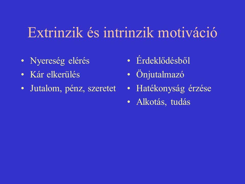 Extrinzik és intrinzik motiváció