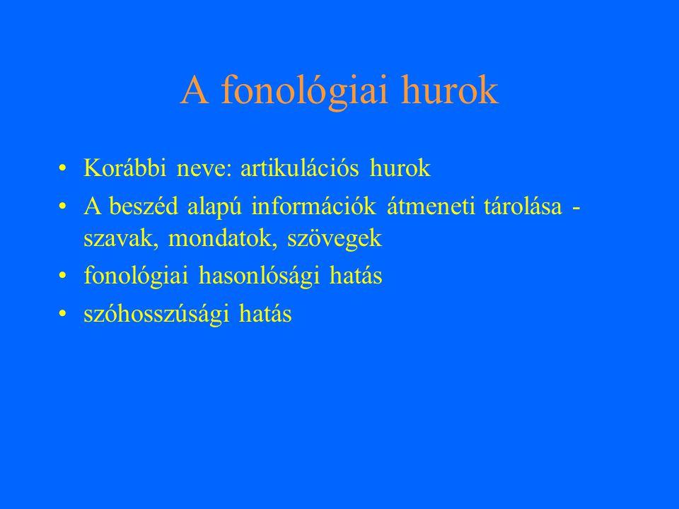 A fonológiai hurok Korábbi neve: artikulációs hurok