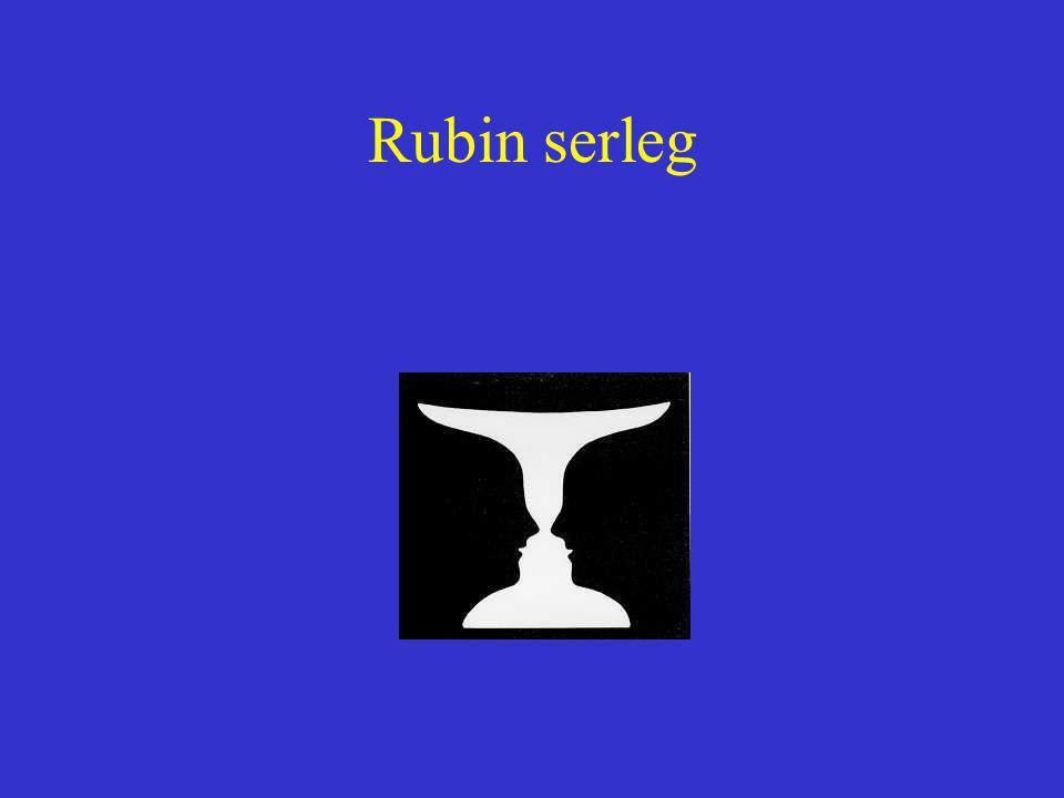 Rubin serleg