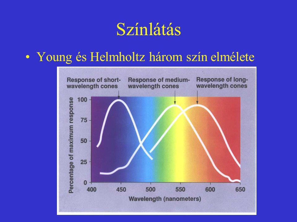 Színlátás Young és Helmholtz három szín elmélete