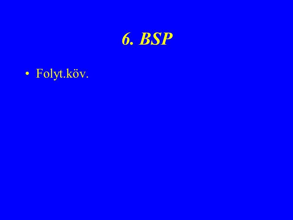 6. BSP Folyt.köv.