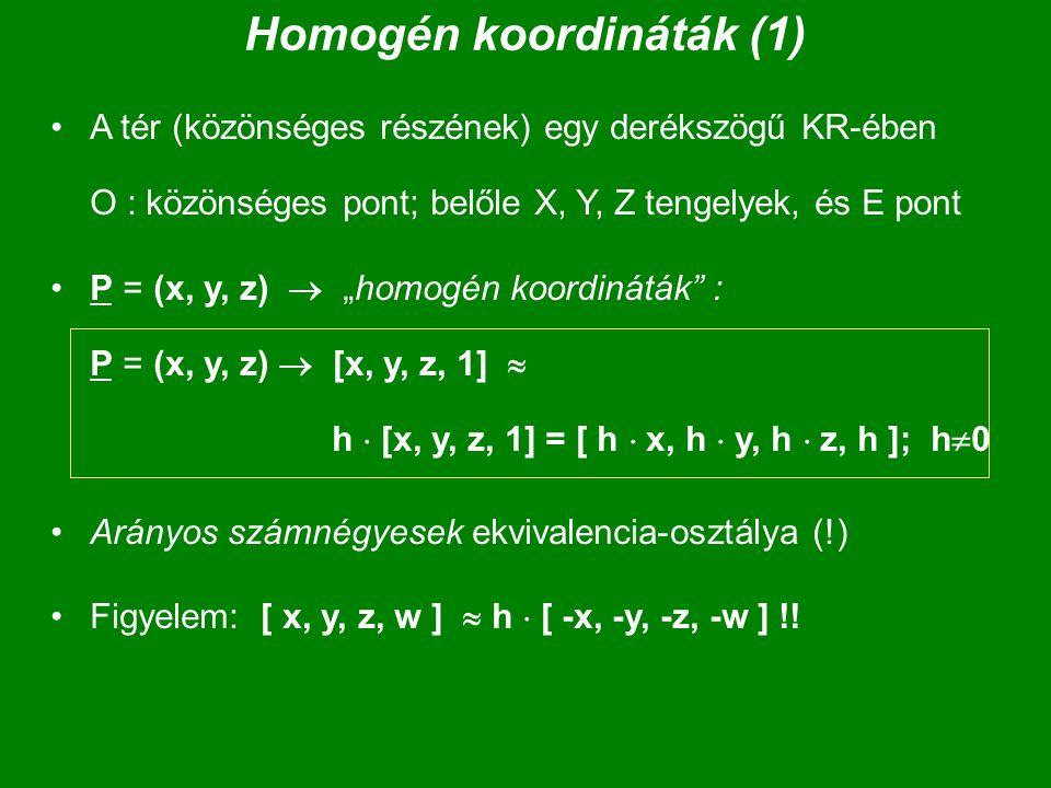 Homogén koordináták (1)