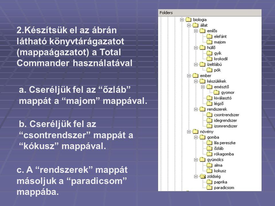 2.Készítsük el az ábrán látható könyvtárágazatot (mappaágazatot) a Total Commander használatával
