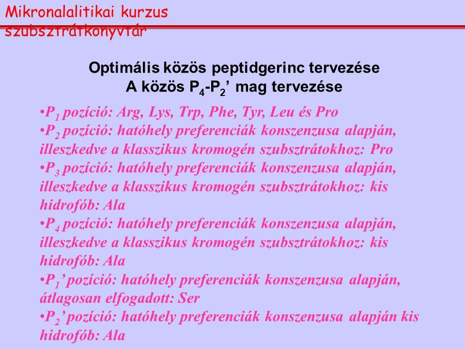 Optimális közös peptidgerinc tervezése A közös P4-P2' mag tervezése