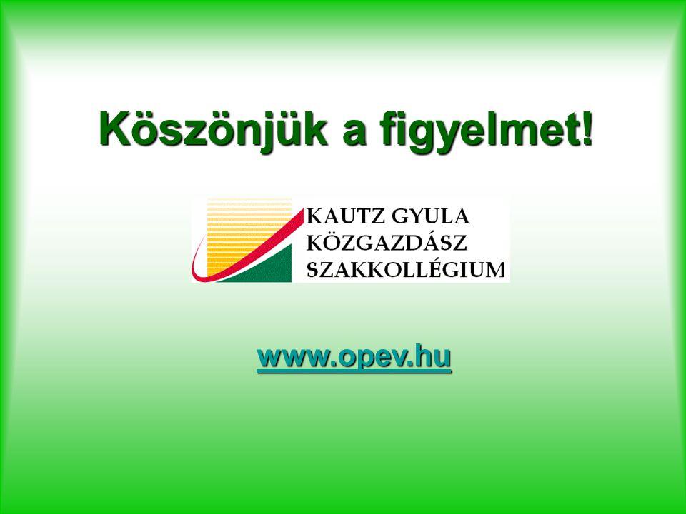 Köszönjük a figyelmet! www.opev.hu