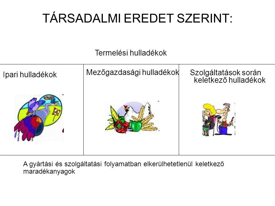 TÁRSADALMI EREDET SZERINT: