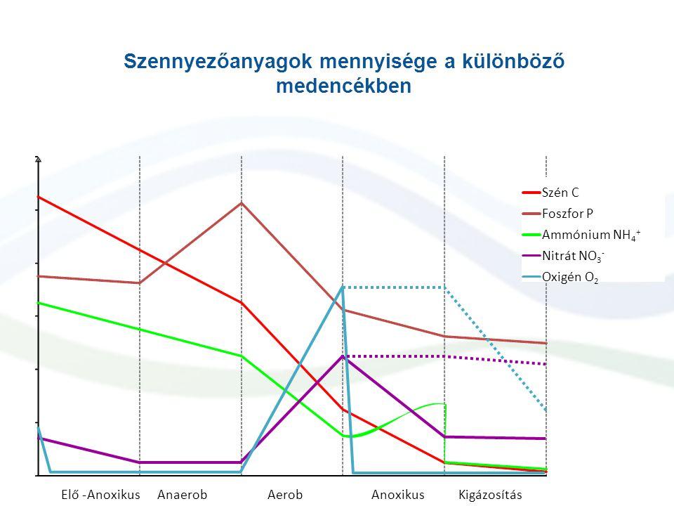 Szennyezőanyagok mennyisége a különböző medencékben