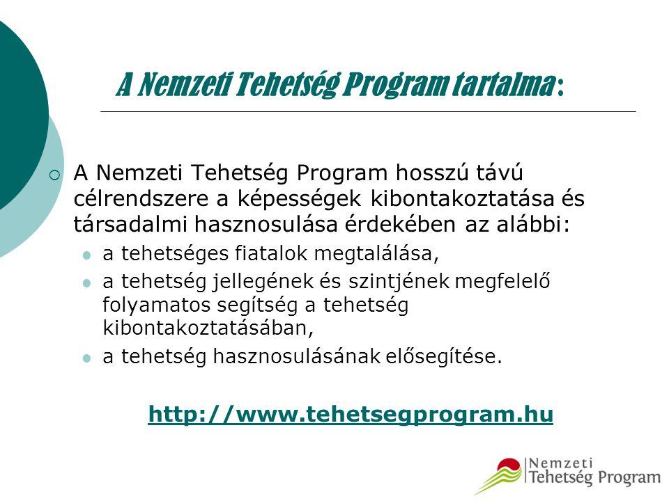 A Nemzeti Tehetség Program tartalma :