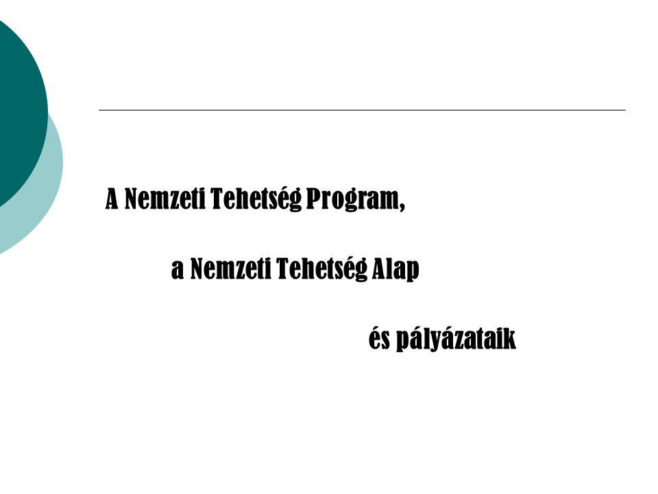 A Nemzeti Tehetség Program,