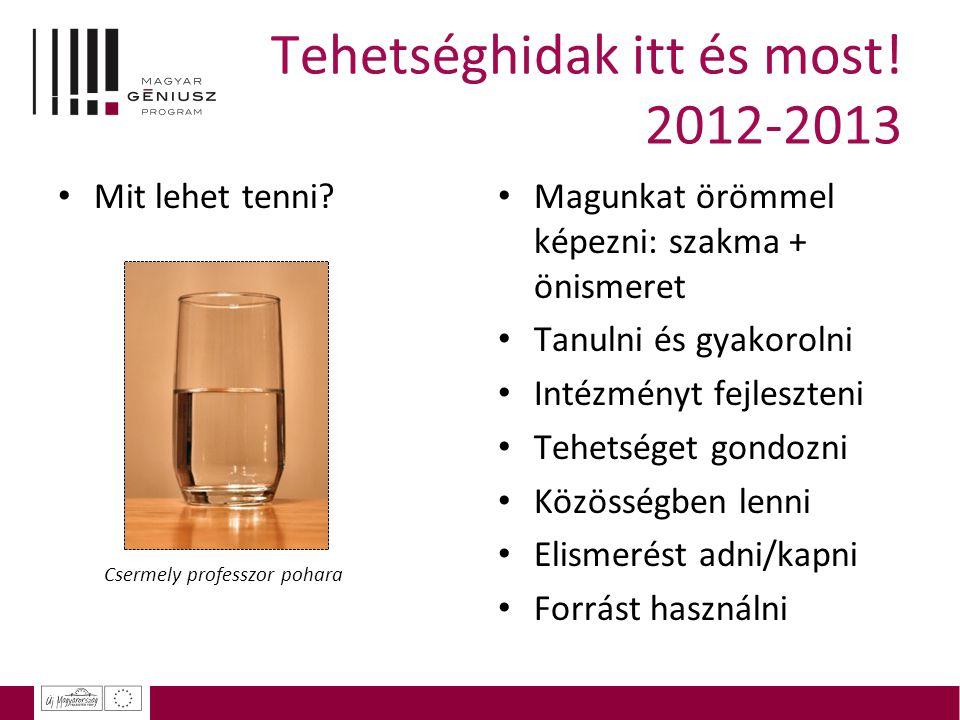 Tehetséghidak itt és most! 2012-2013