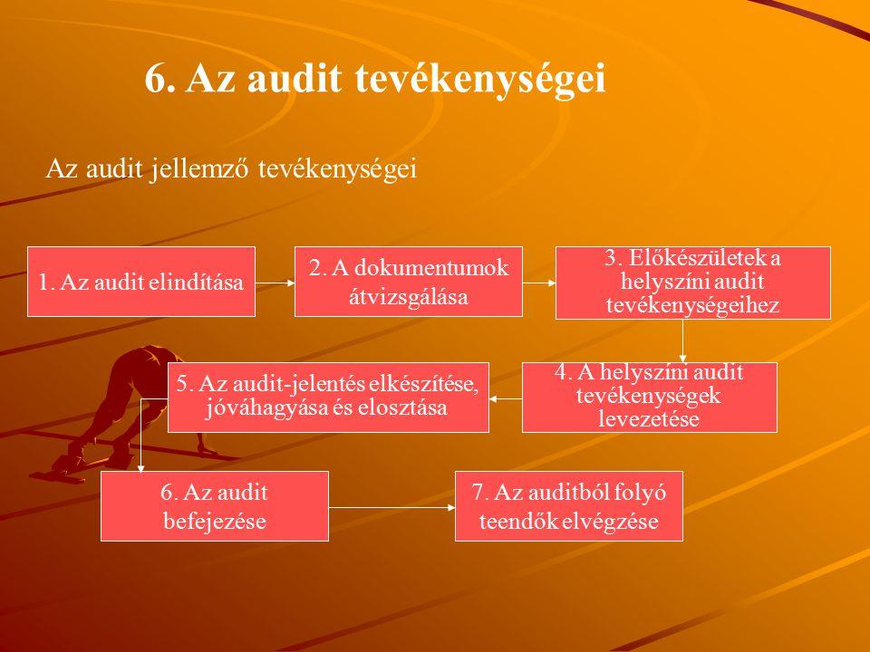 6. Az audit tevékenységei