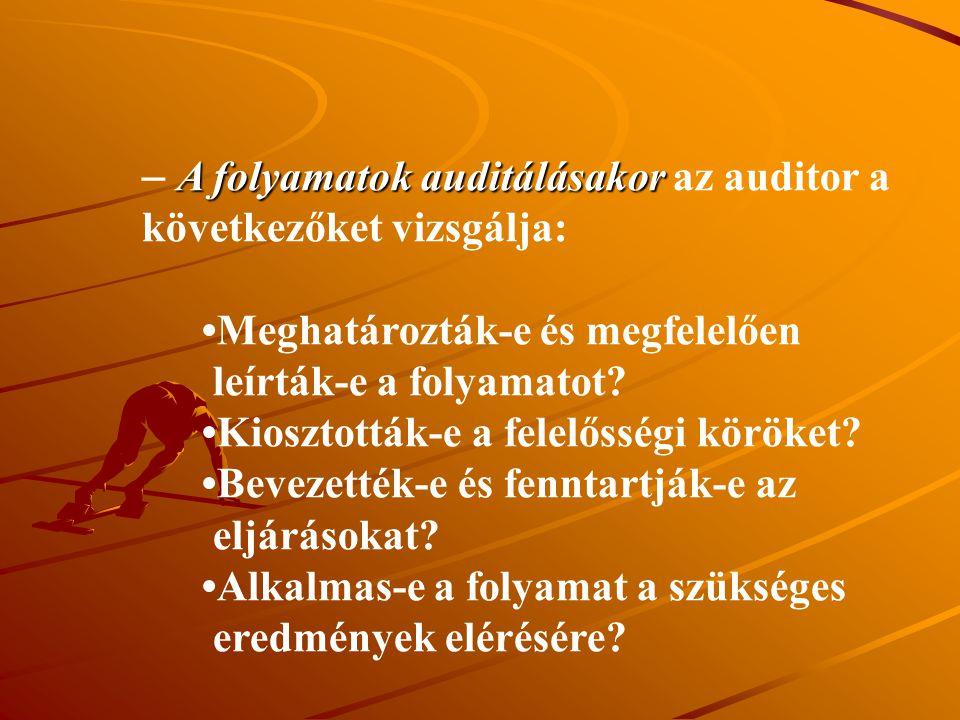 A folyamatok auditálásakor az auditor a következőket vizsgálja: