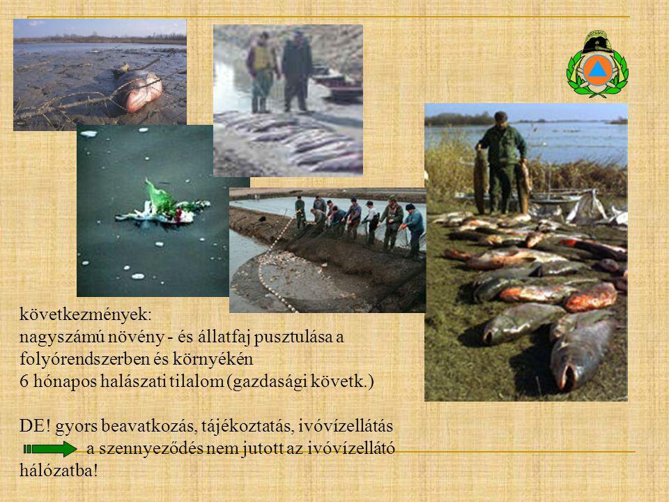 következmények: nagyszámú növény - és állatfaj pusztulása a folyórendszerben és környékén. 6 hónapos halászati tilalom (gazdasági követk.)