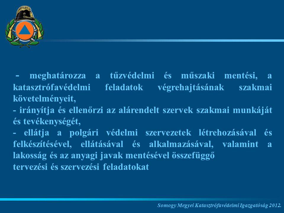 - meghatározza a tűzvédelmi és műszaki mentési, a katasztrófavédelmi feladatok végrehajtásának szakmai követelményeit,