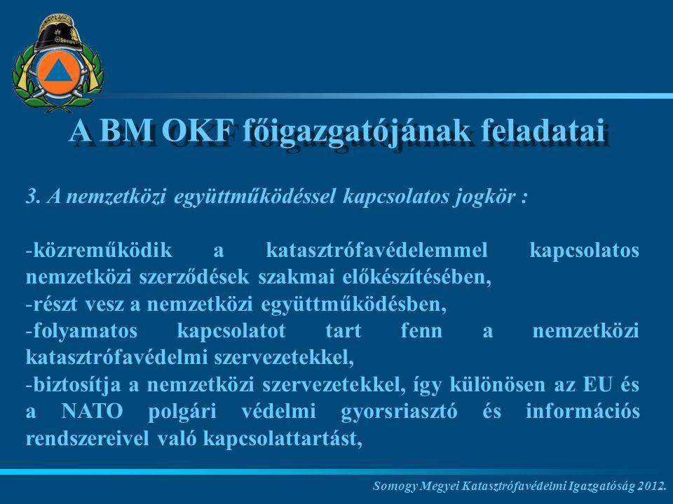 A BM OKF főigazgatójának feladatai