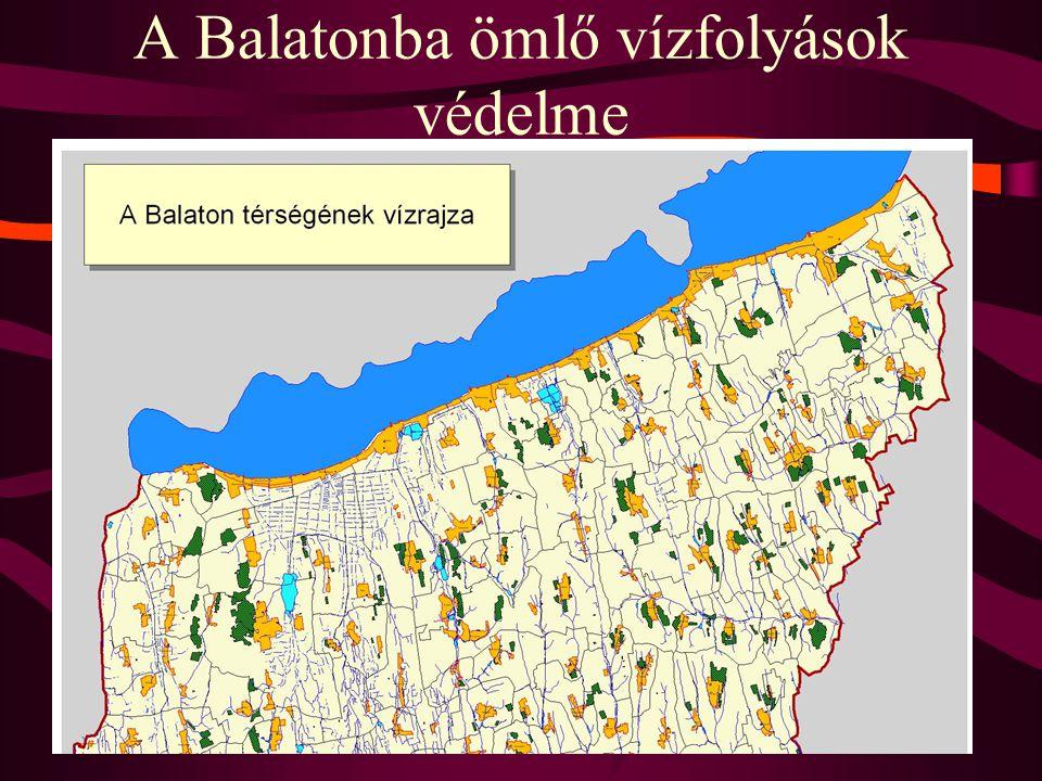 A Balatonba ömlő vízfolyások védelme