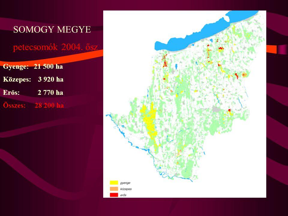 SOMOGY MEGYE petecsomók 2004. ősz Gyenge: 21 500 ha Közepes: 3 920 ha