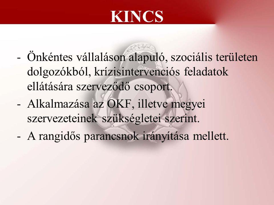 KINCS Önkéntes vállaláson alapuló, szociális területen dolgozókból, krízisintervenciós feladatok ellátására szerveződő csoport.