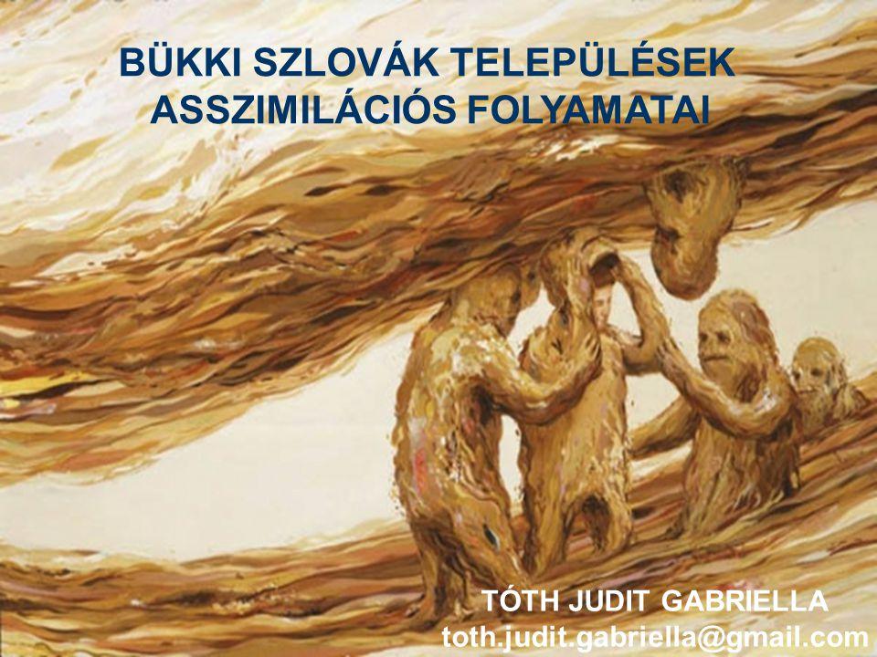 BÜKKI SZLOVÁK TELEPÜLÉSEK ASSZIMILÁCIÓS FOLYAMATAI