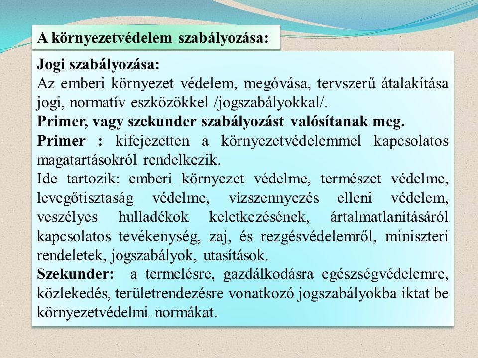 A környezetvédelem szabályozása: