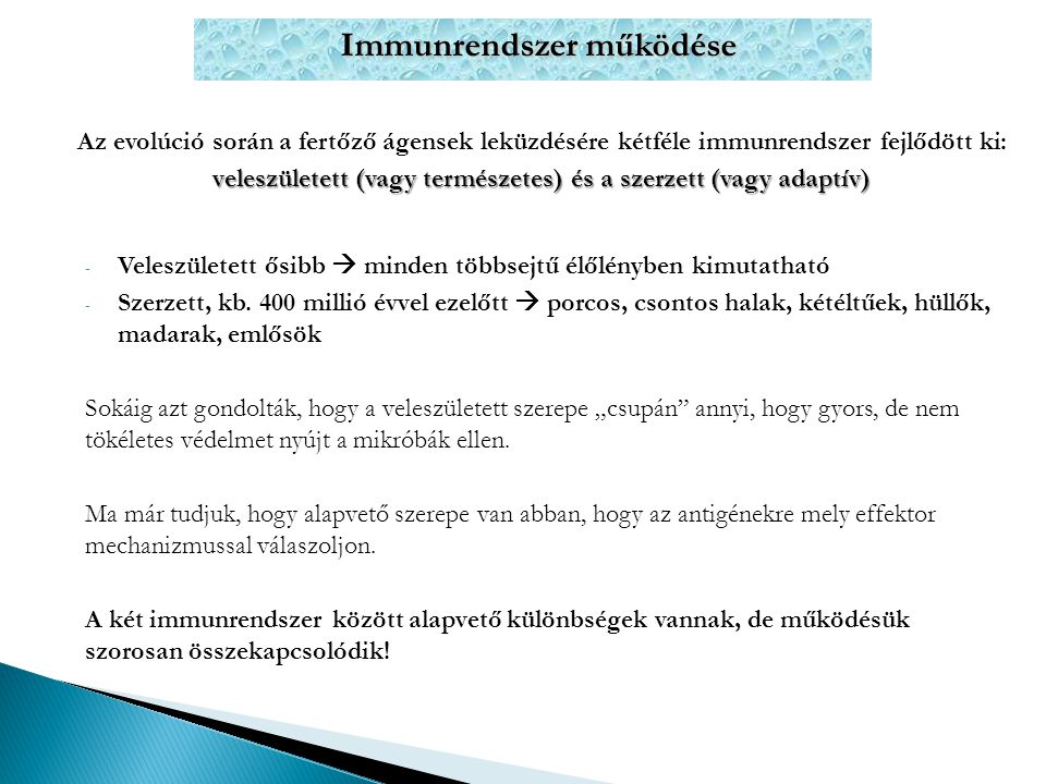 Immunrendszer működése