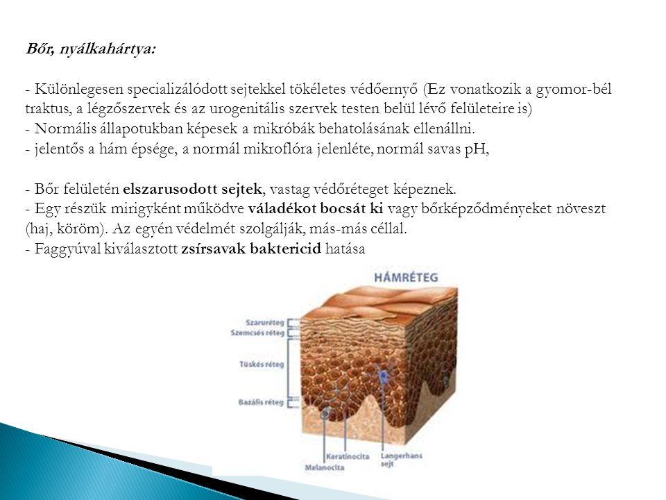 Bőr, nyálkahártya: