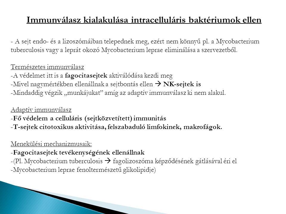 Immunválasz kialakulása intracelluláris baktériumok ellen