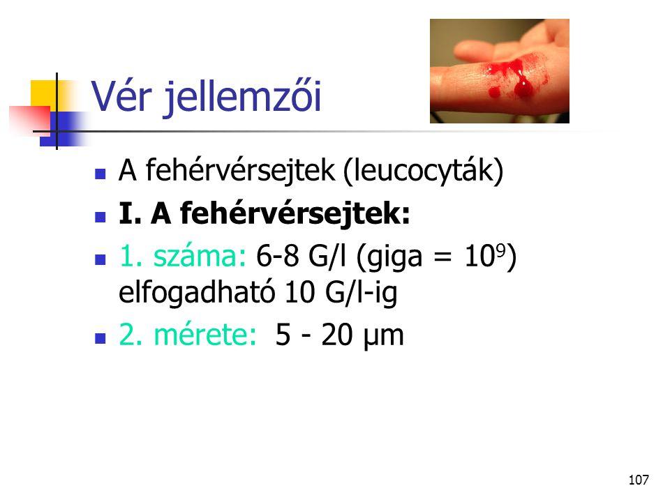 Vér jellemzői A fehérvérsejtek (leucocyták) I. A fehérvérsejtek: