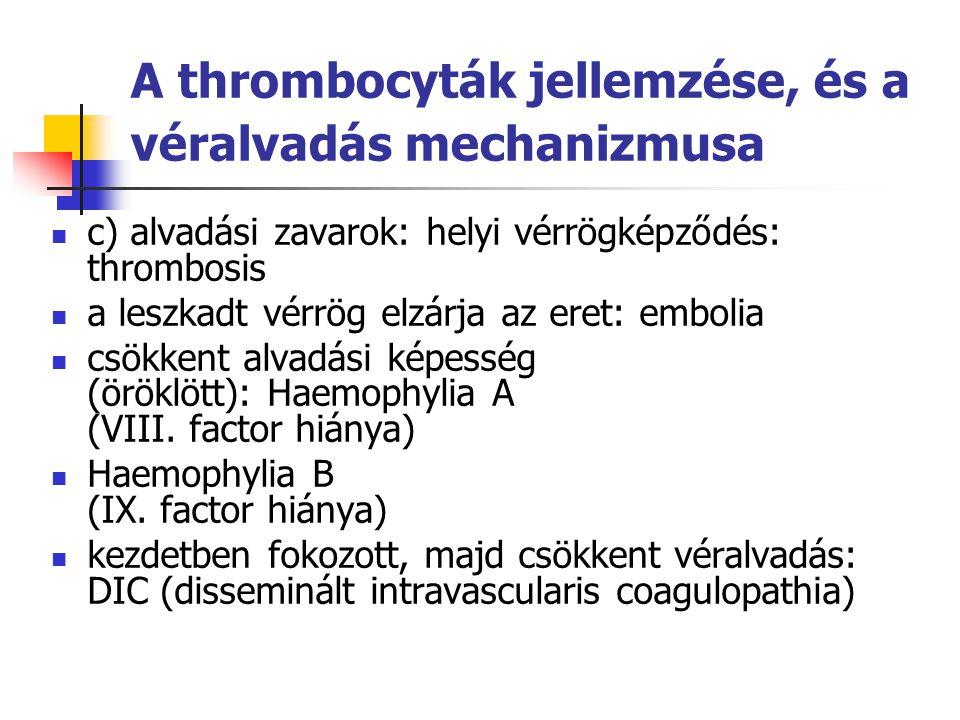 A thrombocyták jellemzése, és a véralvadás mechanizmusa