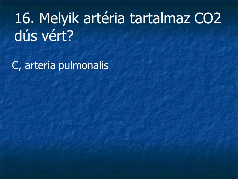 16. Melyik artéria tartalmaz CO2 dús vért
