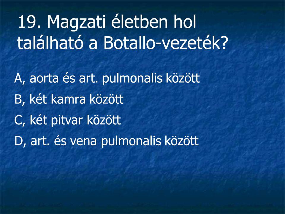 19. Magzati életben hol található a Botallo-vezeték