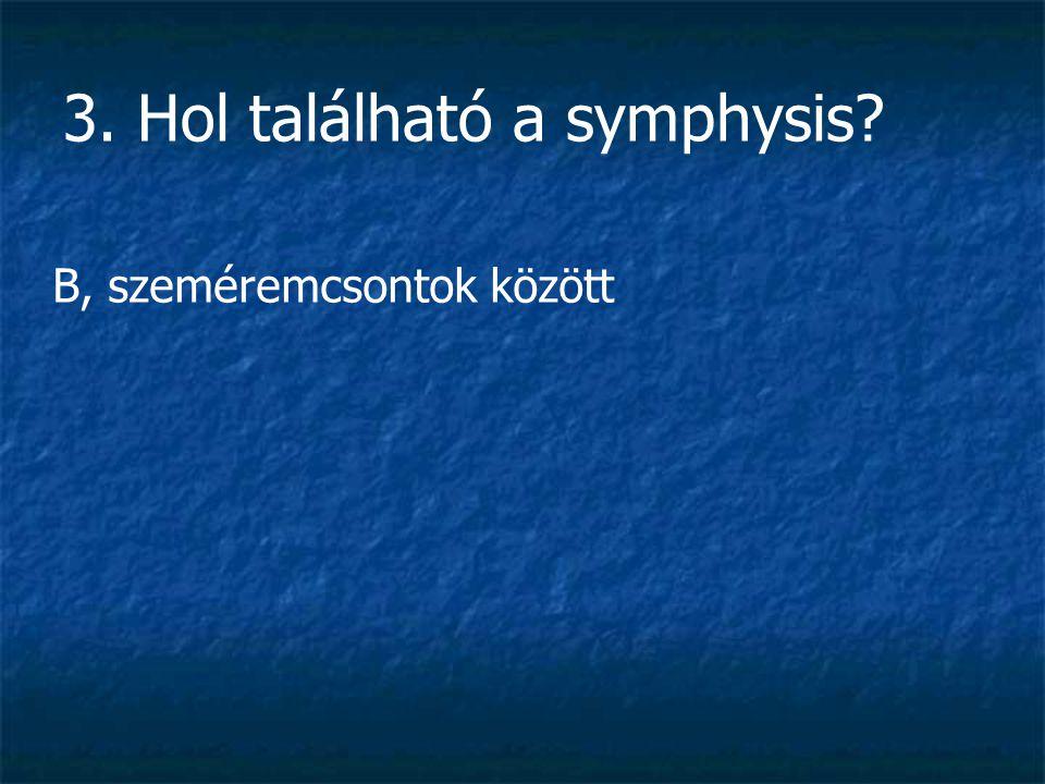 3. Hol található a symphysis