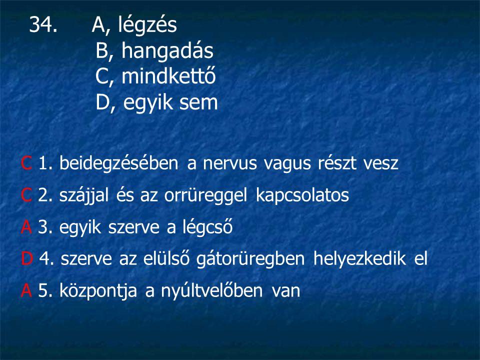 34. A, légzés B, hangadás C, mindkettő D, egyik sem