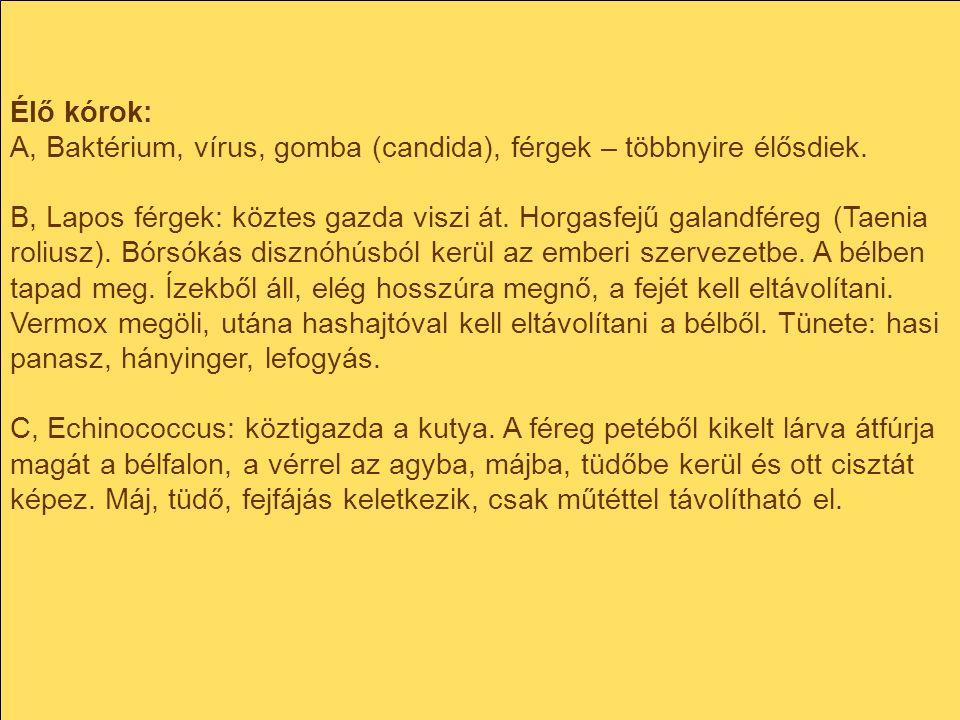 Élő kórok: A, Baktérium, vírus, gomba (candida), férgek – többnyire élősdiek.