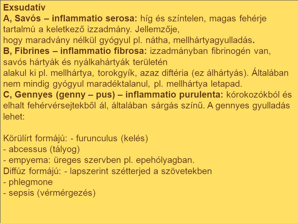 Exsudatív A, Savós – inflammatio serosa: híg és színtelen, magas fehérje tartalmú a keletkező izzadmány. Jellemzője,