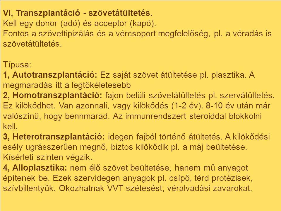 VI, Transzplantáció - szövetátültetés.