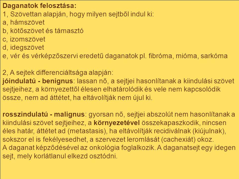 Daganatok felosztása: